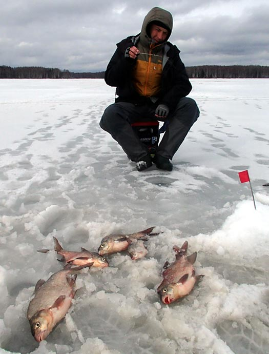 яуза пудыши отчеты о рыбалке