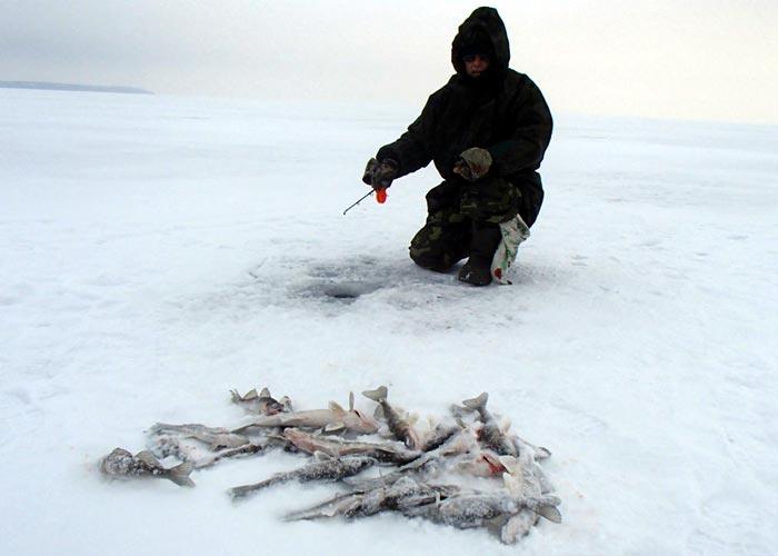 подледная рыбалка на судака на каме