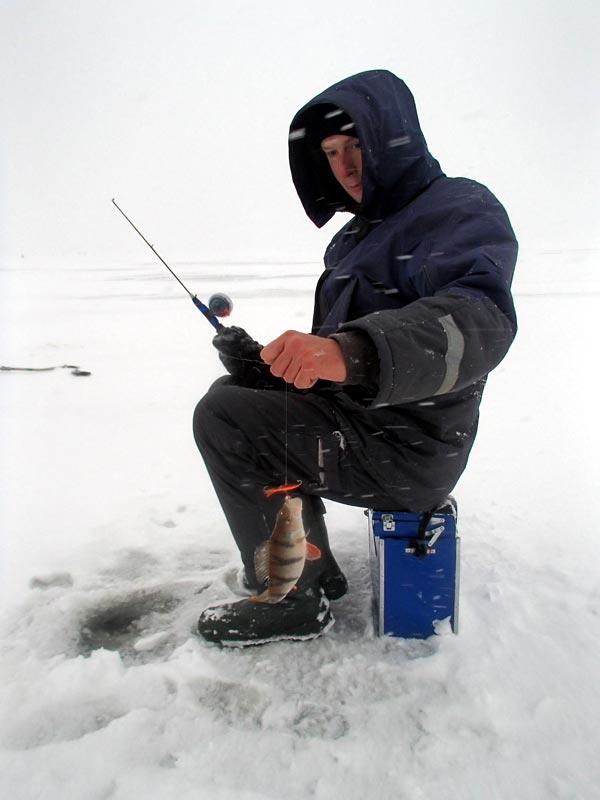 рыбалка на рыбинском водохранилище частно